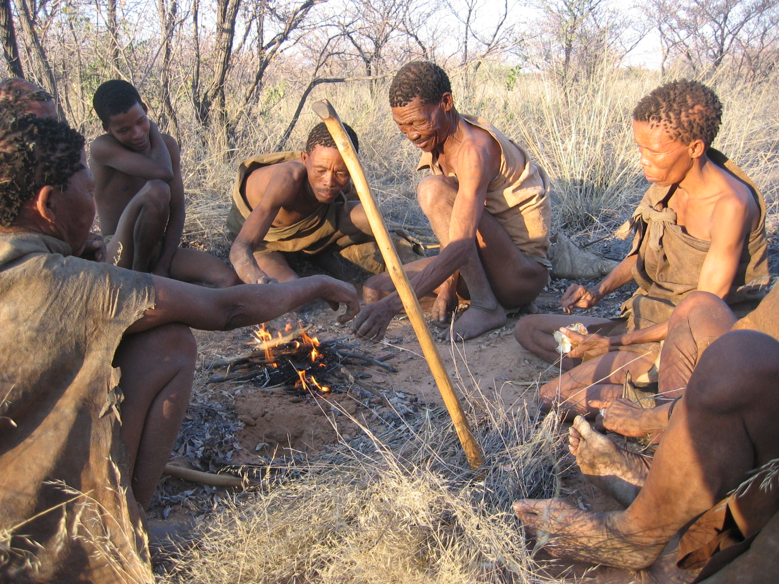 the kung bushmen of the kalahari The kung bushmen of the kalahari desert the kung bushmen of botswana inhabit the semi-arid northwest region of the kalahari desert their average annual rainfall is poor, only six to nine inches a year.